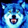Вот такой Шахтер - последнее сообщение от Алексей Смирнов (Wolf)