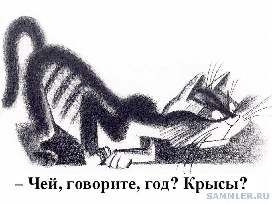 Коттт.jpg