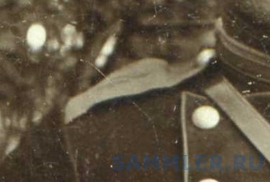 псковцы.до 1905. — копия.jpg