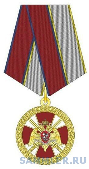 national guard medal combat dist.jpg
