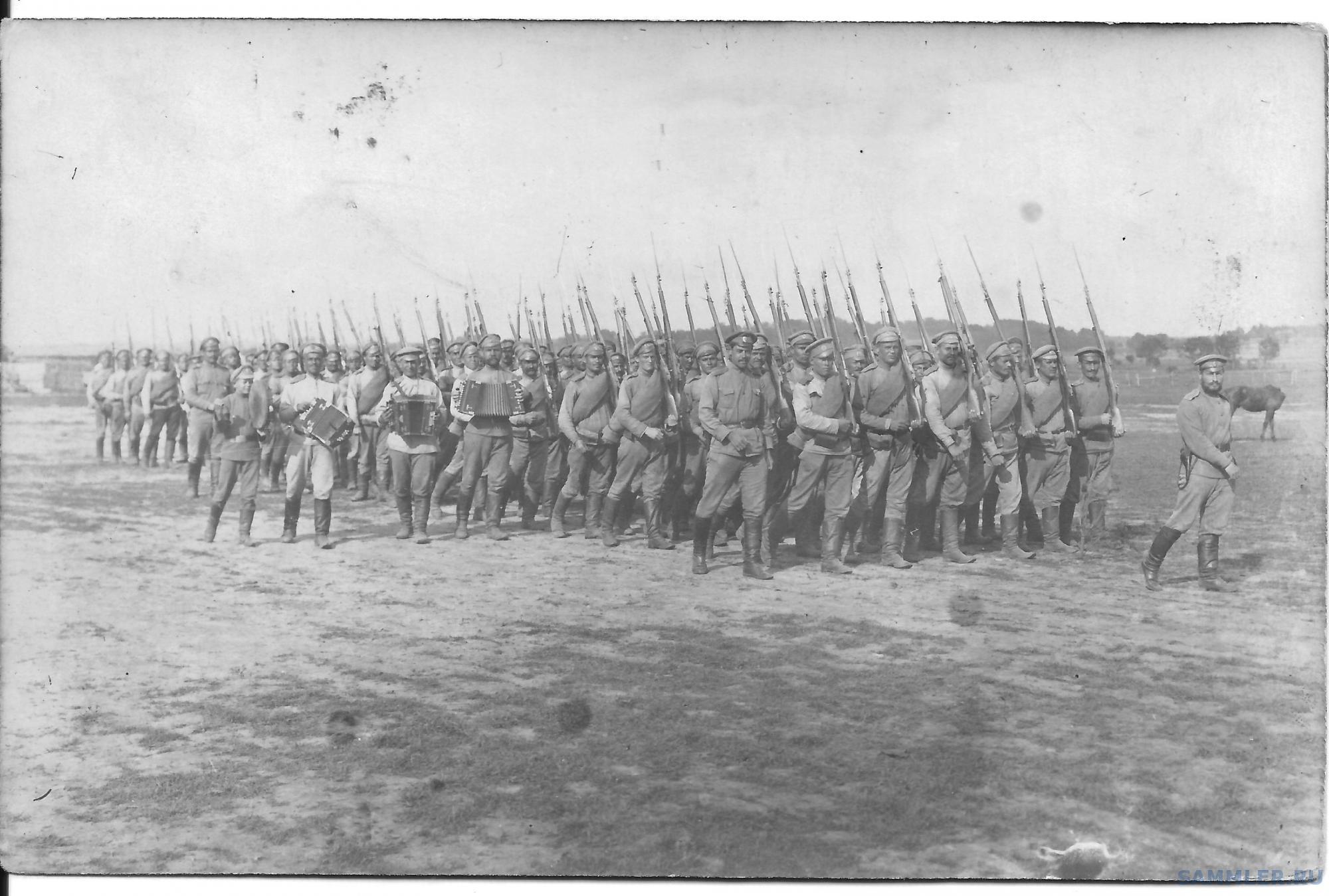 323й Юрьевецкий пехотный полк.jpg