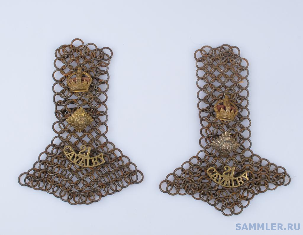 21st Prince Albert Victor's Own Cavalry.jpg