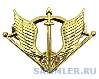 эмблема на берет Отрядов спец. назначения.jpg