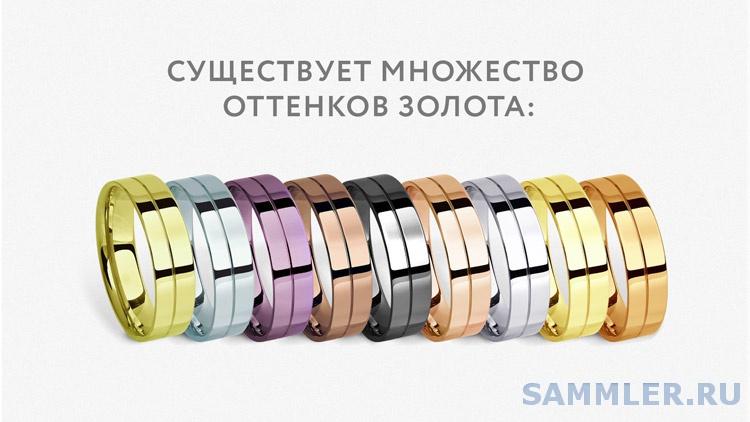 coloraized-750.jpg
