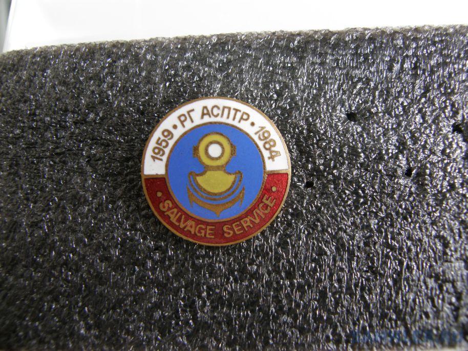 PB150011.JPG