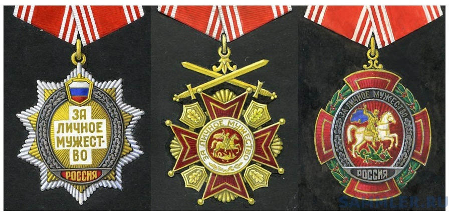 Проект ордена За личное мужество (РФ) - А. Б. Жук 1.jpg