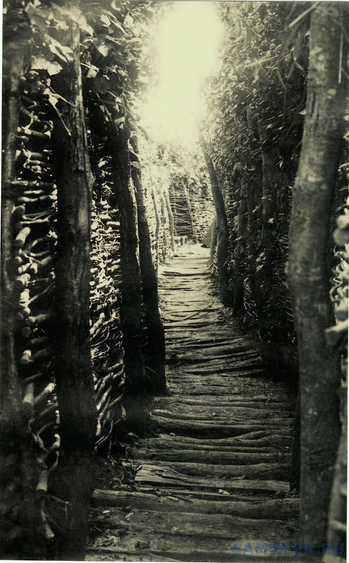 1916 г. Трибуховце 5 1.jpg