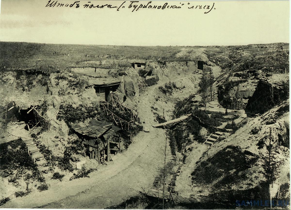 1916 г. Буркановский лес 4 11.jpg