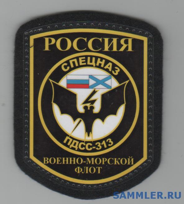 313__отряд__ПДСС__БФ.jpg