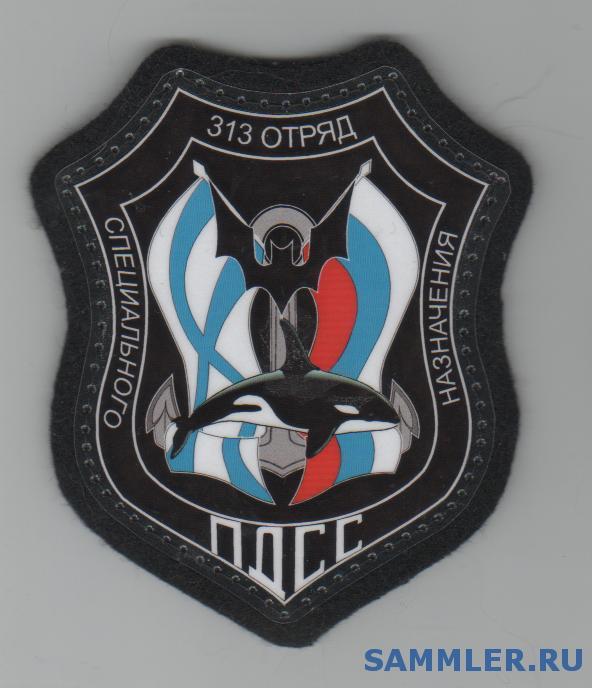 313__отряд__ПДСС__БФ3__вариант.jpg