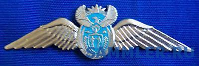 SOUTH_AFRICAN_AIRFORCE_NEW_COMMANDO_PILOT_METAL.JPG