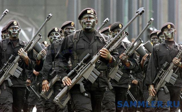 Fuerzas_Especiales_Michoac__225_n.jpg