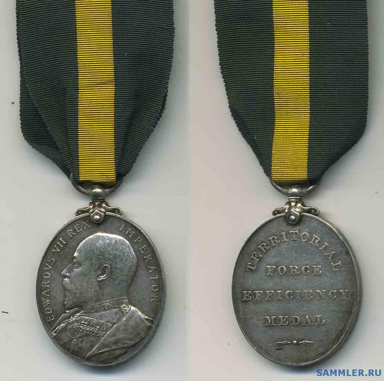 Territorial_Force_Efficiency_Medal_E_VII_.jpg