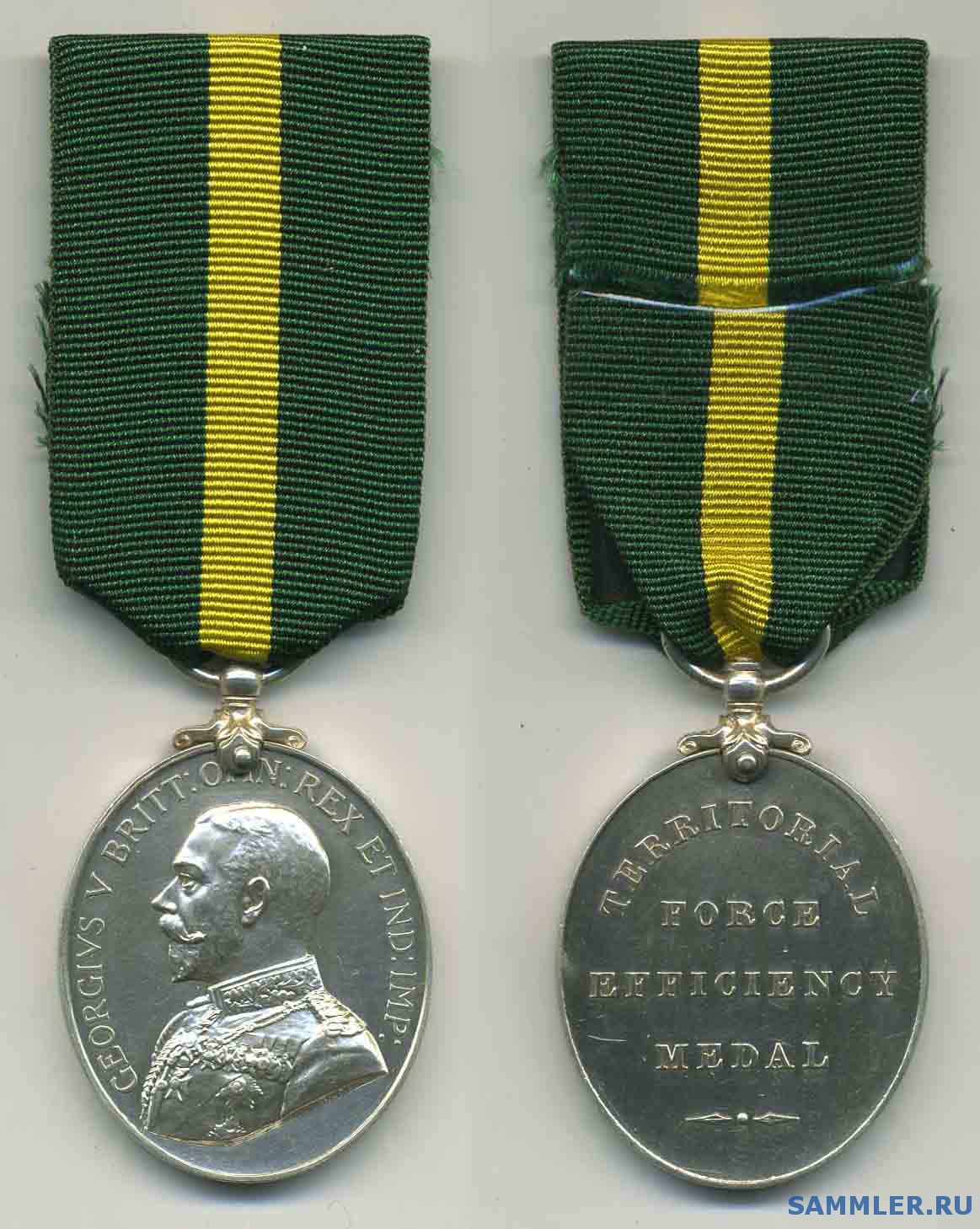 Territorial_Force_Efficiency_Medal__G_V_.jpg