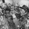 2 медали красного креста - последнее сообщение от Виталий594